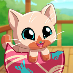 Play Game My Pocket Pets: Kitty Cat
